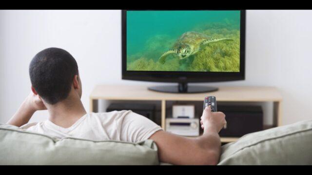 On tv male Snowfall's Male